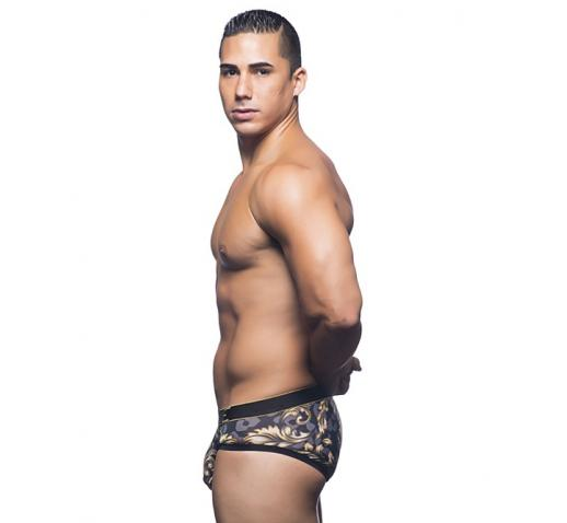 ANDREW CHRISTIAN MASSIVE ICON BRIEF - Icon Print